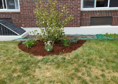 Coos County Nursing Home Berlin NH landscaping